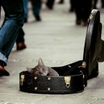 初心者が必ずといって疑問に思う、ギターの値段の差とは一体何なのか?