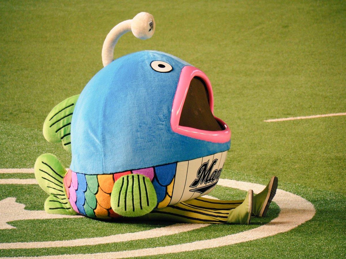 ロッテ 魚