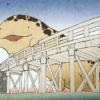 オオサンショウウオを発見した時の対処法は?京都鴨川で発見